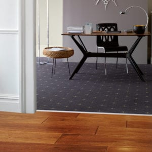 Chrome door bar, connects wood hall floor to carpet