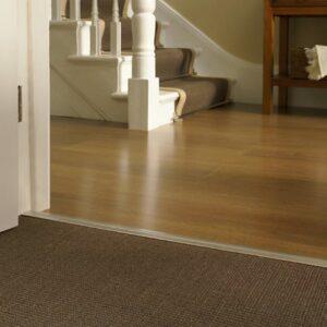 Brass door threshold strip joining wood hall floor to carpet