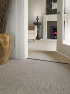 hall beige carpet joined to lounge beige carpet with elegant Premier Double Z9 door threshold in satin nickel