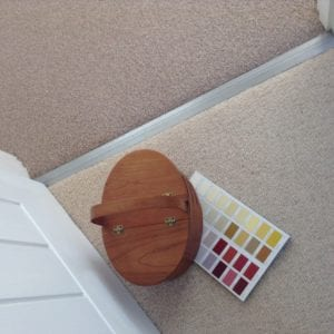 Premier Posh universal cover plate joins carpet to carpet in doorway
