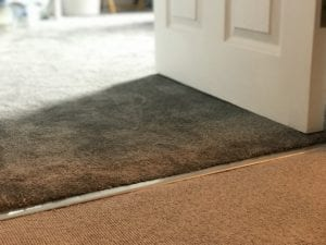 Satin nickel Premier ZZ9 door thresholds joining brown and beige carpets